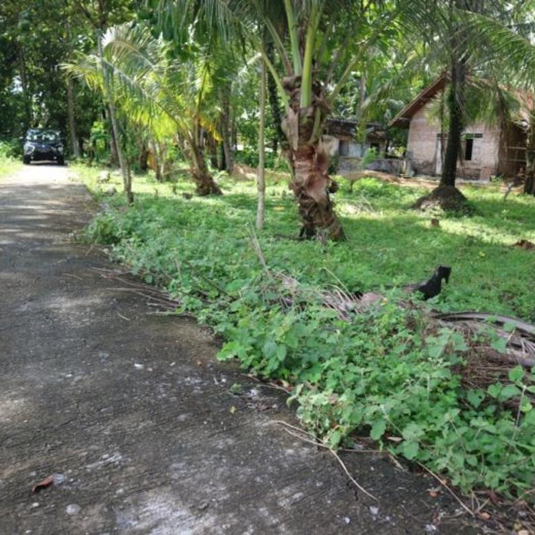 Kavling Layak Untuk Investasi , Harga Murah Dekat Kota Wates