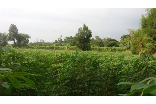 Rp9trily Tanah Dijual