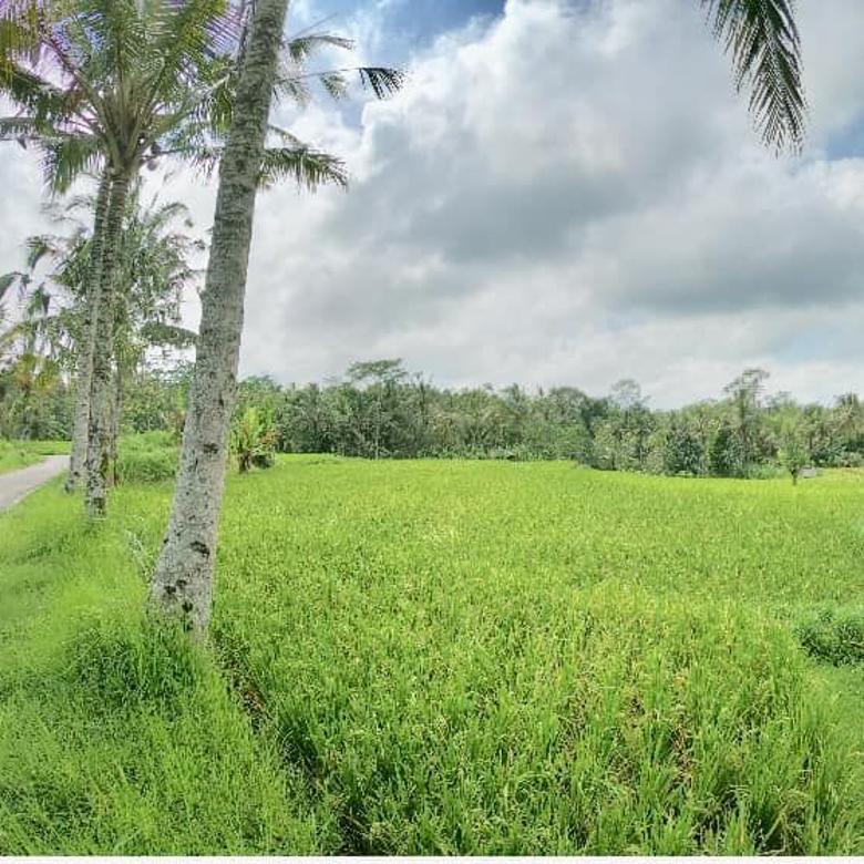 Tanah At Payangan Ubud Gianyar Bali Near Central Ubud