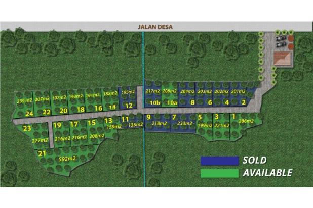 Rp165jt Tanah Dijual