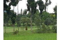 Tanah Kavling Golf Di Bogor Lokasi Strategis, Hanya 5 Menit Exit Tol Bogor
