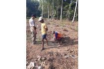 Menakar Site Tanah, Gunakan Rumus Arsitektur: Green Melati