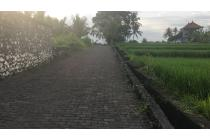 Land Freehold 3215 Sqm with River View and Rice Field View In Great Locatio