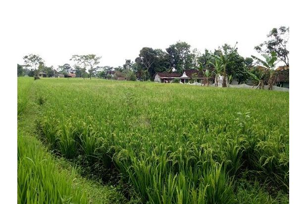 Tanah di Perumahan, Dekat Candi Prambanan  Klaten,  12 X Angsuran Tanpa Bun 16359819