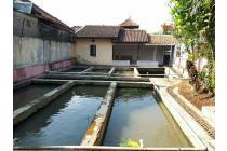 Villa + kolam ikan di subang