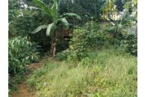 Tanah-Bandung-9