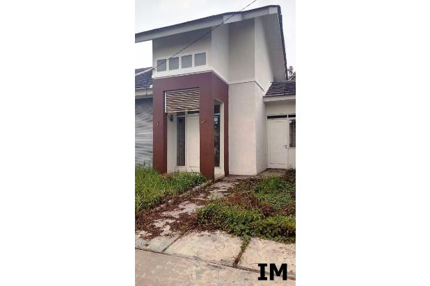 (207) Rumah Murah Bougenville 41/144 Citra Indah City 17149878