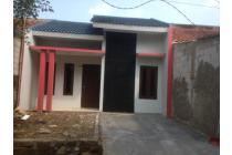 Rumah Lelang BTN di Cileungsi Harga Murah Meriah (Perumahan Pesona Palad)