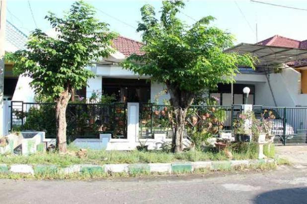 Dijual Rumah STRATEGIS MURAH di Baruk Tengah (Pondok Nirwana) 15144466