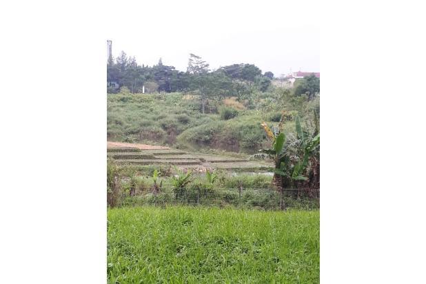 Rp3,54mily Tanah Dijual