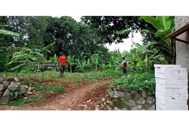 Rp3,6mily Tanah Dijual