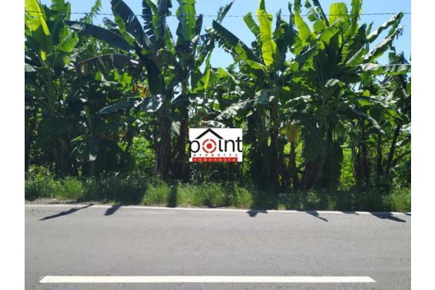 Rp6,87mily Tanah Dijual