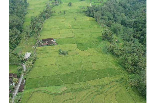 Rp20,9mily Tanah Dijual