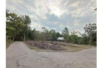 Diskon 25%: Tanah Gamping Hanya 1 Jt-an Dekat UMY