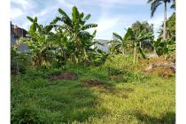 Dijual tanah kosong Strategis di Jl. Dana Puri Perumahan IPTN Cibubur