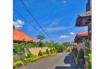 Tanah Ukuran Kecil Di Bongan Tabanan (AMTTAB233)