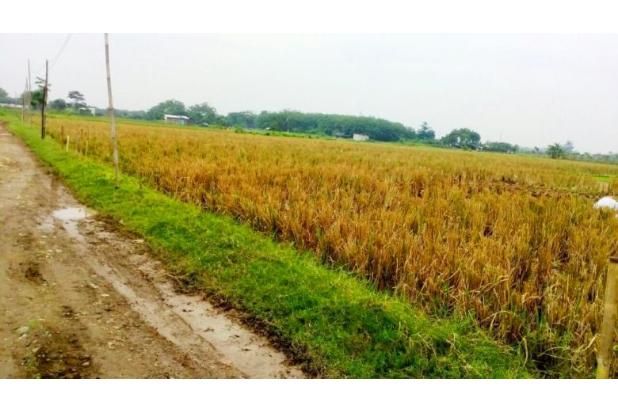 Rp9,14trily Tanah Dijual