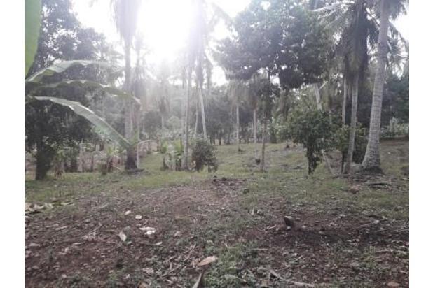 Rp5,98mily Tanah Dijual