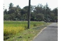Tanah Sawah Jalan Sidomoyo