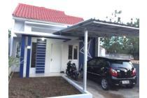Rumah Mewah Dalam Kota (Rajabasa)