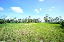 LL.353 - 1/2 ha for multiple villa project. Beautiful valley view plus rice