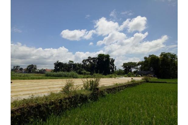 Investasi Tanah Kebondalem , cicilan 12x 17994567