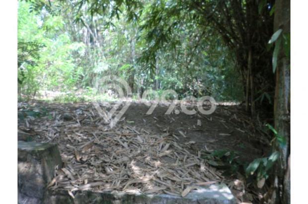 Tanah Unik Dekat Dengan Sungai Kecil, Bisa Papasan Di Kalitirto Berbah 8057885