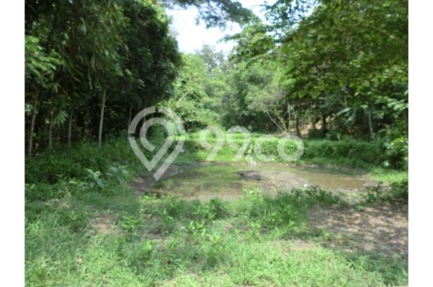 Tanah Unik Dekat Dengan Sungai Kecil, Bisa Papasan Di Kalitirto Berbah 8057887
