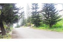 Rumah Nyaman Semi Furnish di Bukit Cemara Indah