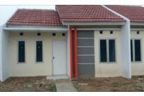 Green New Residence