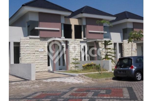 Safira Juanda Resort 15893874