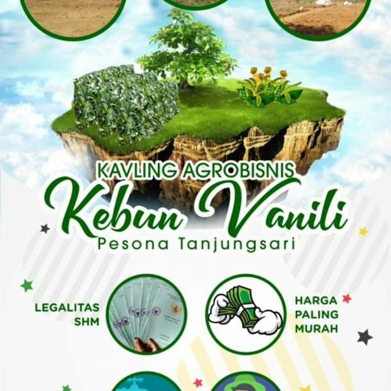 Kavling Produktif paling Murah di Bogor hasil puluhan juta