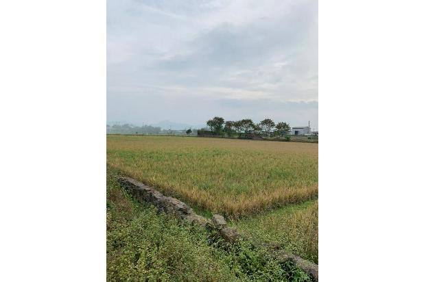 Rp2,31mily Tanah Dijual