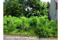 Tanah SHMP 227m2 Rp2,7jt (Sinduharjo, timur Sekolahku My School)