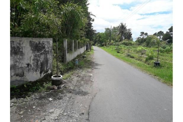 Rumah Murah Sleman, Dijual Rumah Elegan Jalan Kaliurang 9839894