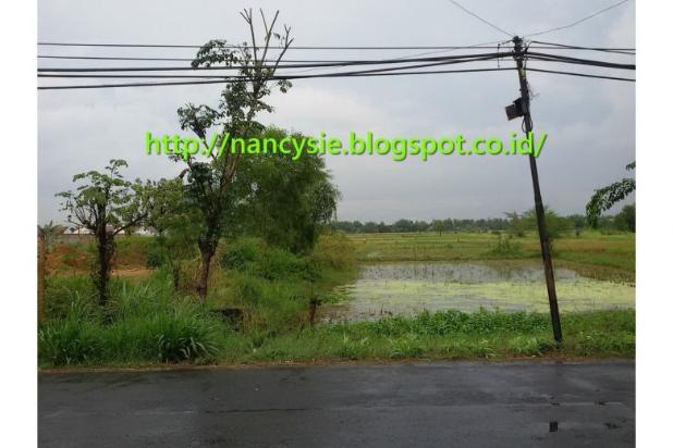Rp7,97mily Tanah Dijual