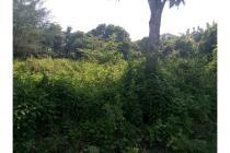 Tanah Strategis Nol Jln Deandles Cocok Untuk Pergudangan di Sidayu Gresik