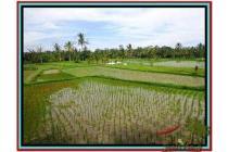 Super Cantik Langka Tanah 3.500 m2 di Ubud Tegalalang E477