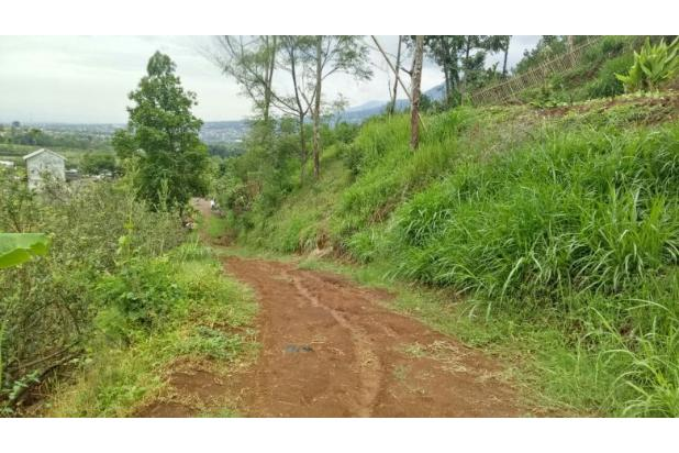 Rp3,07mily Tanah Dijual