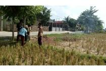 Tanah Murah di Cikarang bisa kredit