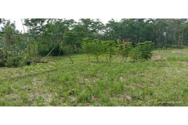 Rp44mily Tanah Dijual