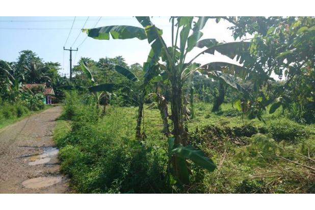 tanah kebun 13697688