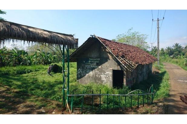 tanah kebun 13697689