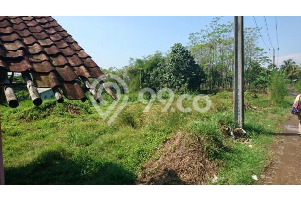 tanah kebun 13697690
