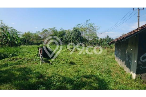 tanah kebun 13697691