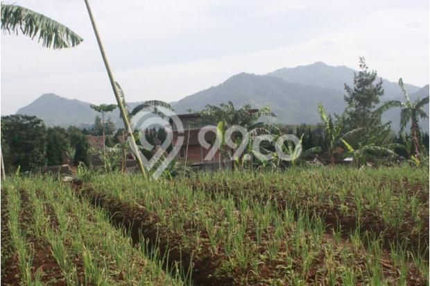 Investasi Tepat Tanah Kavling di Puncak Hanya 60 Jutaan Buy Back Guarantee 16509709