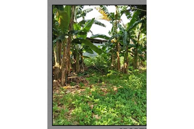 Rp6,88mily Tanah Dijual