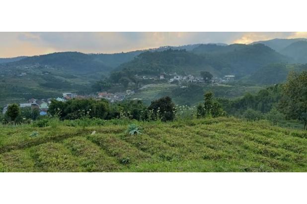 Rp4,95mily Tanah Dijual