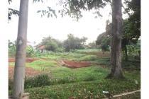 Tanah Murah di Jalan Raya Utama Pemda Bogor