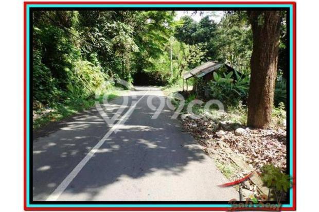 Prospek Investasi, 1.500 m2  Tebing dan sungai besar di Ubud TJUB503 4098799